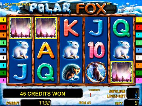 Polar fox игровые автоматы игровые автоматы одесса 2012